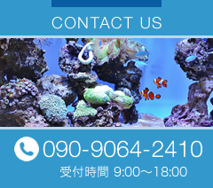 CONTACT US 093-9064-2410 受付時間 9:00〜18:00